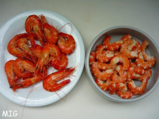 Des crevettes bien fermes
